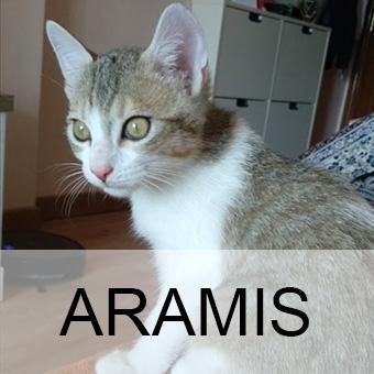 aramisadop